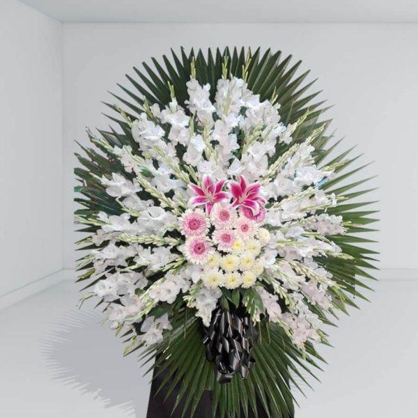 تاج گل طبیعی - تاج گل رخشان