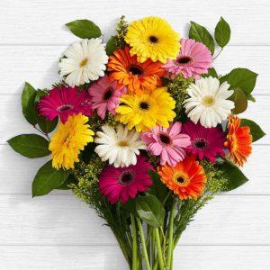 سفارش گل اینترنتی در گلفروشی آنلاین - دسته گل ژربرا