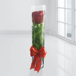 آکواریوم خرید اینترنتی گل رز قرمز