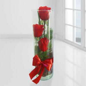 خرید انلاین گل رز فانتزی- آکواریوم گل رز ۳ تایی