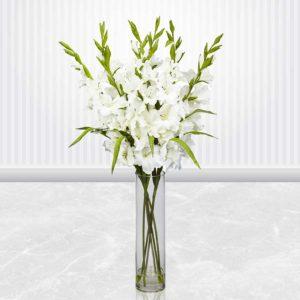 خرید گل ترحیم، گلدان گل ترحیم گلایل