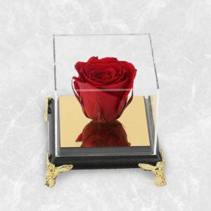سفارش اینترنتی گل رز جاودان قرمز فرشته