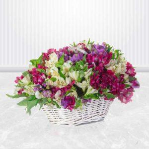 خرید گل انلاین ، سبد گل آلسترومریا