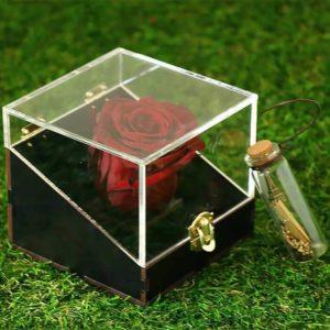 سفارش اینترنتی گل جاودان دیو و دلبر قرمز