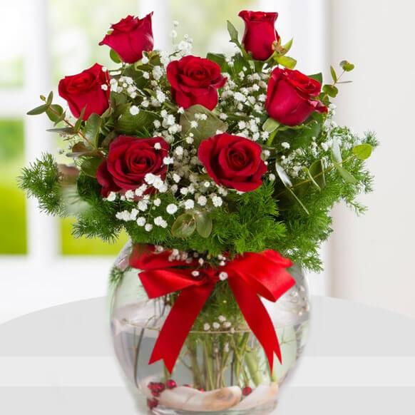 گلدان گل رز قرمز | خرید گل ارزان | سفارش گلدان گل | ارسال گل انلاین| گل  فروشی سرای گل