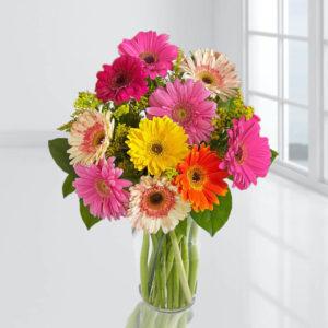 سفارش آنلاین گلدان گل ژربرا
