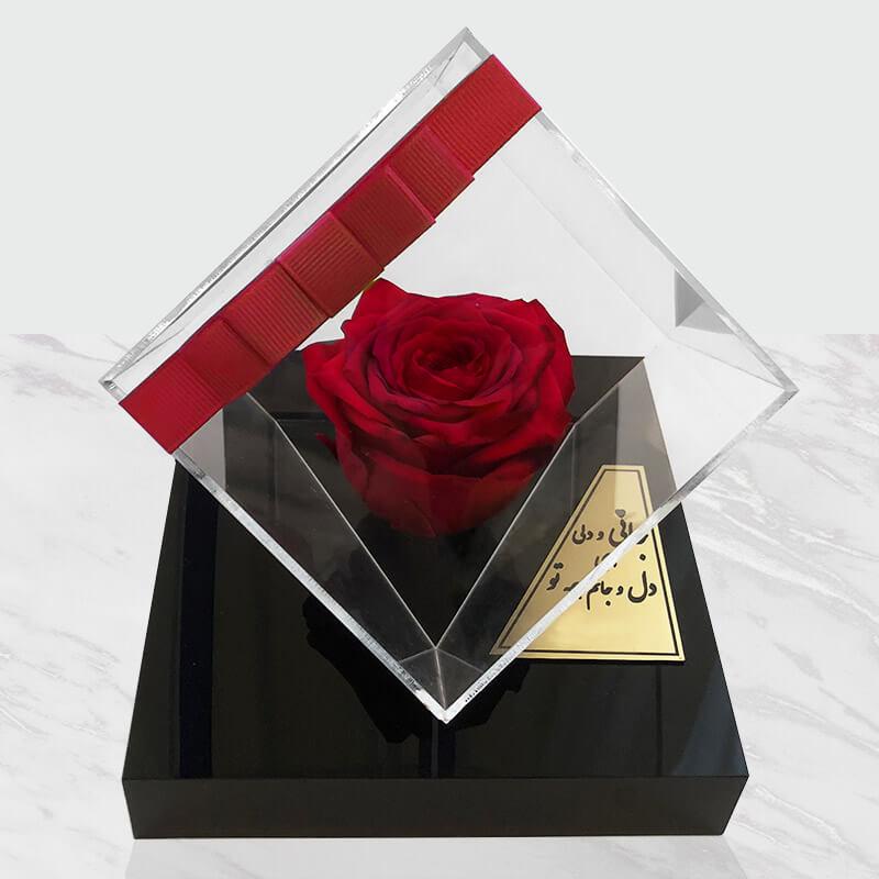 گل جاودان دیو و دلبر قرمز