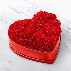 باکس قلبی گل میخک (آمریکا)
