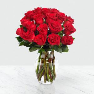 گلدان گل رز قرمز (آمریکا)