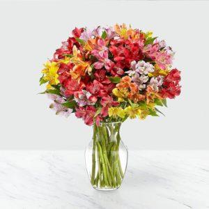 گلدان گل آلسترومریا