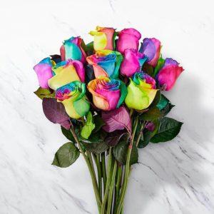 دسته گل رز رنگین کمان