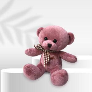 عروسک مینی تدی