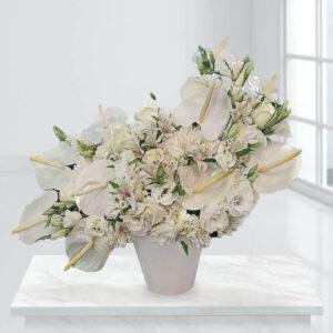 گلدان گل بهشتی
