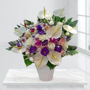 گلدان گل پرنسس
